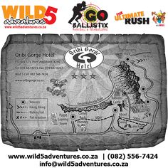 Baboon, World Famous, Team Building, Amazing Photography, Castle, Around The Worlds, Hiking, River, Marketing