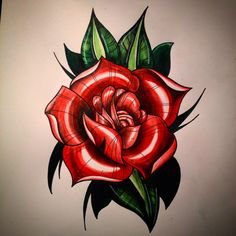 Neotraditional rose tattoo drawing in colouring pencil