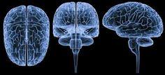 Rester positif : Les distractions de la vie, les gens négatifs, les éléments externes et les « fuites de cerveau » peuvent vous mettre face aux défis