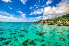Did you think Tahiti is only for honeymooners and the rich and famous? And have a look at our guide for Tahiti on a budget. Bora Bora, Miss Tahiti, Tahiti Vacations, Vacation Resorts, Dream Vacations, Tiare Tahiti, Tahiti Islands, Tahiti French Polynesia, Best Honeymoon Destinations