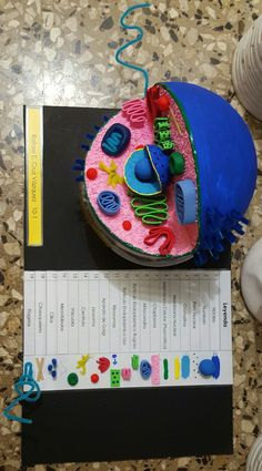 edible cell out of jello / plant cell gelatin model / animal cell activity / jello plant cell project / non-edible animal cell model Biology Projects, Science Projects For Kids, Science Crafts, Science Experiments Kids, Edible Cell Project, Cell Project Ideas, 3d Animal Cell Project, 3d Animal Cell Model, Dna Project
