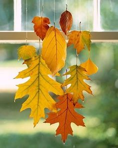 Dip fresh leaves into wax to preserve color and texture, then tie clear fishing line to the stem of the leaf and hang upside down for an easy fall decoration. (scheduled via http://www.tailwindapp.com?utm_source=pinterest&utm_medium=twpin&utm_content=post776305&utm_campaign=scheduler_attribution)
