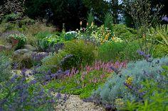 A new heart for garden in Denbigshire.