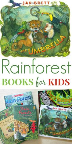 R is for rainforest….Rainforest Books for Kids -- this selection is especially good for younger kids, focusing on the amazing plants and animals in the rainforests and not so much on destruction. Rainforest Preschool, Rainforest Classroom, Preschool Jungle, Rainforest Habitat, Rainforest Theme, Rainforest Animals, Preschool Books, Book Activities, Amazon Rainforest