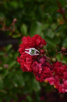 14KW 1.17ct Green Diamond Ring with white diamond accents.
