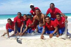 """Shark killed after tourists drag it out of the water for pictures  THIS IS SO WRONG! WHERE IS OUR MUCH VAUNTED """"HUMANITY"""" TO OUR FELLOW CREATURES ?!!"""