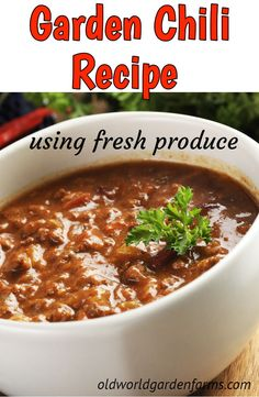 Fresh Garden Chili Recipe - made from fresh produce from the garden. Instructions also include using canned tomatoes. Thick and delicious chili made from fresh ingredients from the garden. Chili Recipe With Fresh Tomatoes, Fresh Chili Recipe, Homemade Chilli Recipe, Canned Tomato Recipes, Chilli Recipes, Healthy Soup Recipes, Beef Recipes, Canning Recipes, Healthy Dinners
