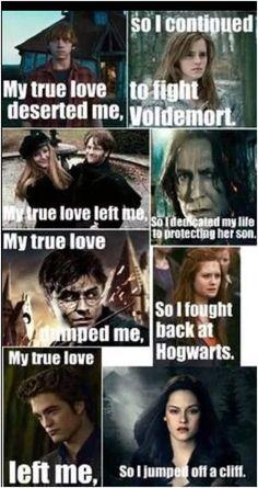 Harry potter memes #joke #harry #potter joke harry potter Harry Potter World, Harry Potter Twilight, Harry Potter Puns, Harry Potter Universal, Harry Potter Characters, Twilight Meme, Harry Potter 3rd Movie, Twilight Saga Quotes, Harry Potter Disney