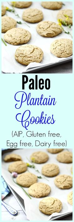 Paleo Plantain Cookies (gluten free, grain free, AIP, egg free, dairy free, healthy)