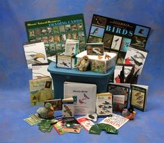 DNR - Illinois Department of Natural Resources has many free trunks for educators to use!  You just have to reserve it and pick it up!  This is for the Birds resource trunk.