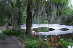 the bridge to cross a little dream..