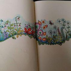 Johanna Basford's Enchanted Forest #johannabasford #johannabasfordenchantedforest #adultcoloring #coloringforadults #marcoraffines