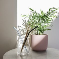 Eco Friendly Stores, Stainless Steel Straws, Zero Waste, Biodegradable Products, Recycling, Earth, Vase, Home Decor, Decoration Home