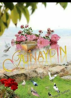 Günaydın mesajları , En güzel Günaydın resimleri, Günaydın resimleri paylaş , sevgiliye Günaydın... Good Morning Messages, Table Decorations, Flowers, Karma, Quotes, Islam, Blue Roses, Hipster Stuff, Hapy Day
