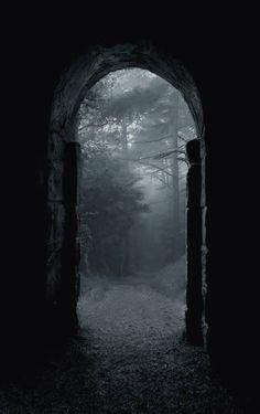 The Forest Doorway