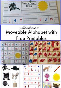 Montessori Moveable Alphabet, Language Arts, Preschool, Toddler, Montessori Materials, Kids activities, Free Printables, phonics www.naturalbeachliving.com