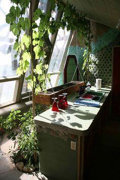 Phoenix Earthship - I LOVE the herb box hanging behind the counter