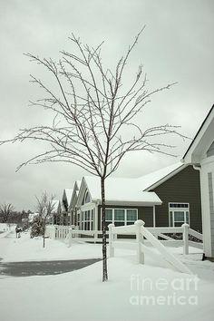 http://fineartamerica.com/featured/1-hello-snow-roberta-byram.html