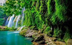 Scarica sfondi cascata, foresta tropicale, lago, giungla