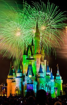 Disney Theme Park Guides for EVERY Resort Woldwide (Disneyland, WDW, Paris, Hong Kong & Tokyo)