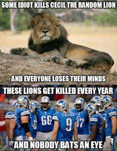 Detroit Lions Memes 2019 : detroit, lions, memes, Lions
