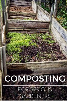 This comprehensive guide to composting covers everything from bin construction to applying the finished product.