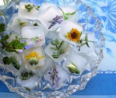 Flowers and Posies Frozen in Time! Fresh Floral Ice Cubes. Photo by French Tart (if you dont use distilled water the ice isnt as clear)