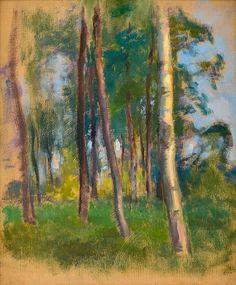 EERO JÄRNEFELT, öljy levylle. Helene Schjerfbeck, Chur, Tree Art, Les Oeuvres, Still Life, Scandinavian, National Parks, Watercolor, Landscape