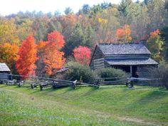 Smokey Mountain's Tennessee