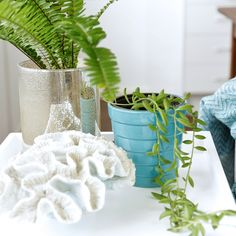 I•N•D•O•O•R  P•L•A•N•T•S  don't just help purify the air inside our home, they also benefit us emotionally. An @Houzzau article by @anneellarddesign said plants 'help to increase our levels of positivity and make us feel more secure and relaxed. They can also help with loneliness and depression. Caring for a living thing gives us a purpose and is rewarding, especially when a plant you have been lovingly caring for bursts into bloom.' ⠀⠀⠀⠀⠀⠀⠀⠀⠀⠀⠀⠀⠀⠀⠀⠀ Do yourself a favour, and if you don't… Loneliness, Benefit, Depression, Purpose, Glass Vase, Bloom, Positivity, Plants, Projects