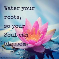 Inspirational And Motivational Quotes : 23 New Quotes to Inspire and Light Your Soul quotes Inspirational And Motivational Quotes : 23 New Quotes to Inspire and Light Your Soul New Quotes, Motivational Quotes, Life Quotes, Roots Quotes, Water Inspirational Quotes, Quotes About Roots, Flower Quotes Life, My Family Quotes, Crush Quotes