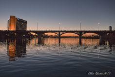 austin congress bridge - Google Search