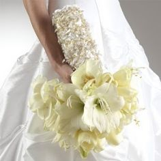 Perfect Wedding Flower - White Amaryllis