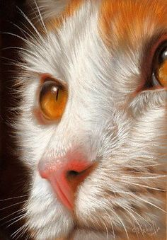 Christina Schulte #cat #painting | pinned by www.amgdesign.co.nz