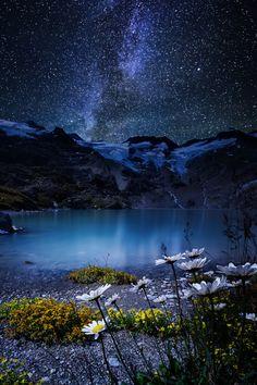 Amazing night shot | sky | | night sky | | nature |  | amazingnature |  #nature #amazingnature  https://biopop.com/