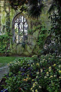 Window through the garden