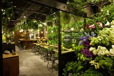 EXACTLY WHAT I WANT!!!! the cafe tables plants and flowers not only available for purchase but also ambiance too