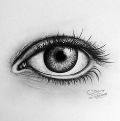 Images For > Realistic Colored Eye Drawings