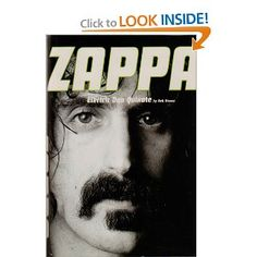 Zappa: Electric Don Quixote