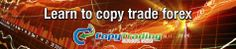 Learn Copy Trading ForexSocial Trading - Is It A Scam? - Learn Copy Trading Forex