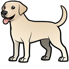 Newest Images Labrador Retriever outline Suggestions Performed you recently welcome a whole new Labrador Retriever in to your own home? Are you currently thinking . Dog Drawing Simple, Cute Dog Drawing, Cute Animal Drawings, Cute Animal Pictures, Cartoon Dog Drawing, Black Labrador Retriever, Retriever Puppies, Animal Outline, Dog Coloring Page