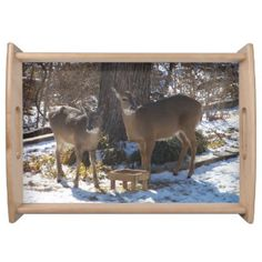 Rustic Whitetail Deer Serving Tray