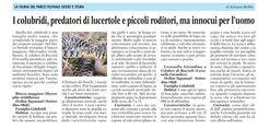 La fauna del parco fluviale articolo di Adriana Robba (La Guida 8 maggio 2015)