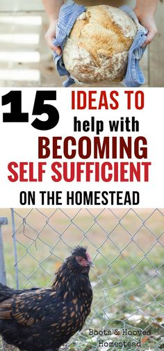 Being self sufficient is something that is very important to my family. But how do we make self sufficiency work on the homestead? 15 ideas to get started on today!