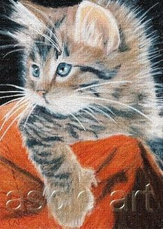 ACEO print limited edition grey tabby cat  by Anna Hoff