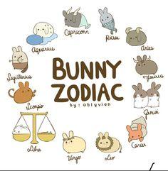 bunny zodiac- funny that I'm Gemini and that's 2 buns, exactly what I have! - bunny zodiac- funny that I'm Gemini and that's 2 buns, exactly what I have! Cute Animal Drawings, Kawaii Drawings, Cute Drawings, Pencil Drawings, Zodiac Signs Animals, Zodiac Star Signs, Astrology Signs, Zodiac Signs In Order, Chinese Zodiac Signs