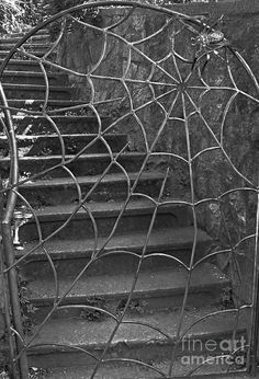 Spider And Web Iron Gate Fine art prints & greeting cards by elisa Gothic Garden, Goth Home, Wrought Iron Gates, Gothic Home Decor, Welding Art, Gothic House, Iron Work, Garden Gates, Yard Art