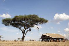 África   RATPANAT Luxury & Adventure