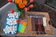 Gourmet S'Mores Bar Outdoor Party