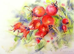 Rosehip Bounty by Ruth S Harris